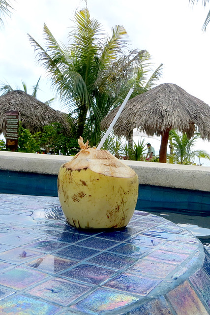 Drinking Coconut Milk in the Caribbean