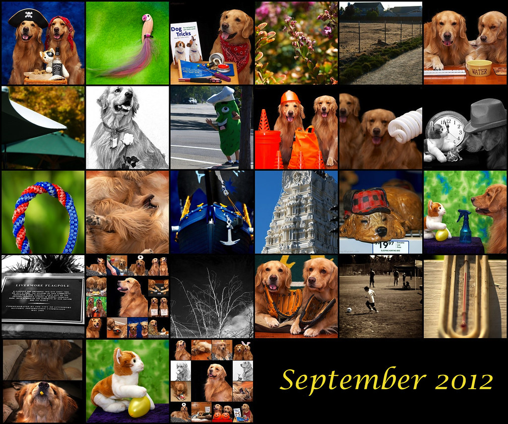 Scavenger Challenge September 2012