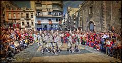 Algemesí 2012 - Fiestas de la Mare de Déu de la Salut