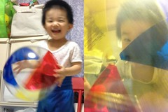 ビーチボールで遊ぶとらちゃん (2012/9/28)