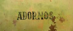 16. Aralık 2011 - 8:52 - andreaharari@yahoo.com