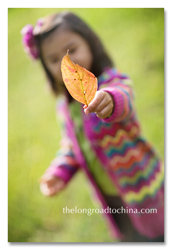 a leaf for you Mommy BLOG