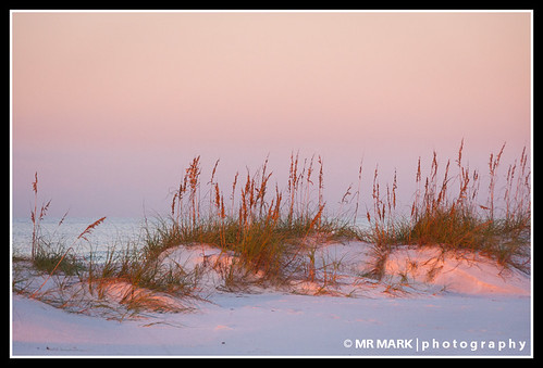 ocean morning sea beach colors sunrise island sand florida dunes fl destin oats tinted eglin okaloosa
