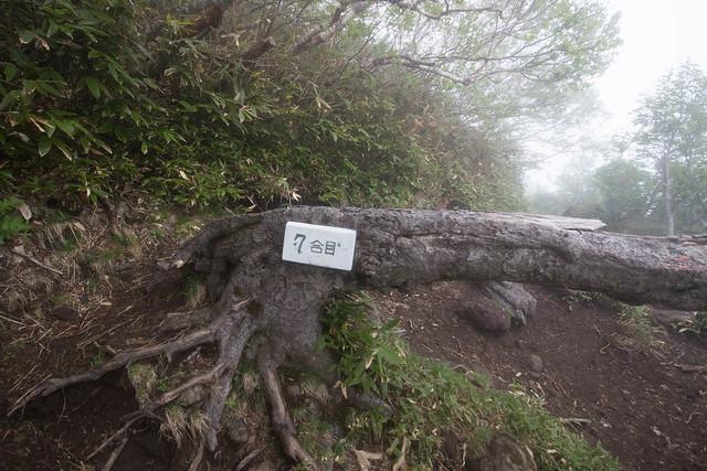 20150615-北海道羊蹄山(3日目)-0176.jpg