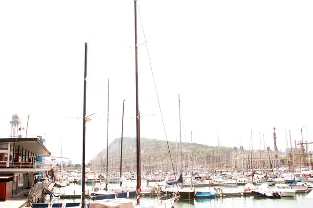 8_port vell