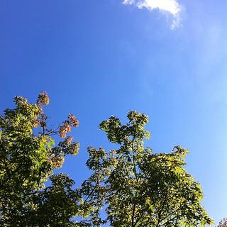 明日から夏休みです #sky