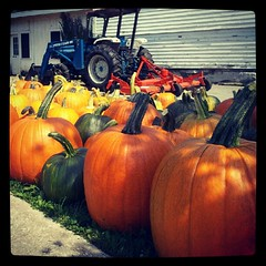 I love #fall ! #pumpkin #pumpkins #happy #autumn #newhampshire #farmstand