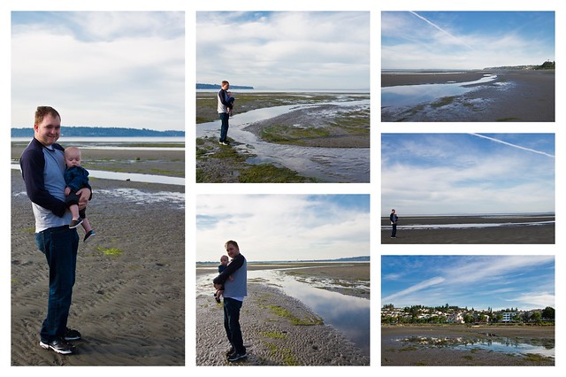 Low Tide Collage