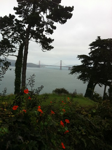 GG Bridge and nasturtiums