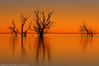 Sunset at Lake  Menindee
