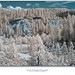 Malakoff Diggins Basin, Infrared by Sherwood Harrington