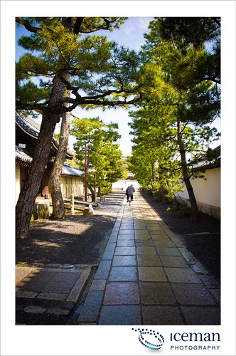 Myoshin-ji Temple 381
