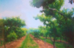 peach orchard  impression