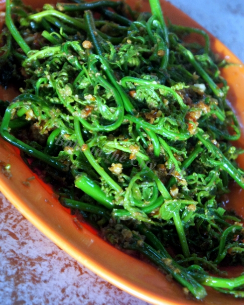 Stir-fried Fern Shoots
