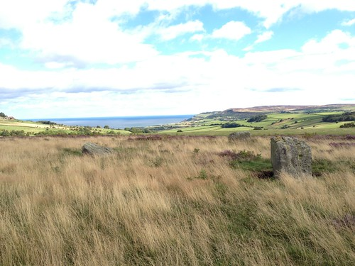 Ramsdale Stone Circle with Brow Moor in the distance