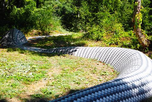 snake_path