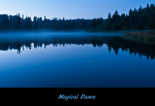Magical Blue Dawn