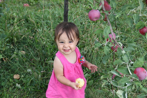 Standing baby picking apples 5
