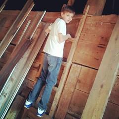 floor(0.0), outdoor structure(0.0), wall(0.0), attic(0.0), roof(0.0), wood stain(0.0), laminate flooring(0.0), beam(0.0), wood flooring(0.0), plaster(0.0), flooring(0.0), carpenter(0.0), wood(1.0), lumber(1.0), hardwood(1.0), stairs(1.0),
