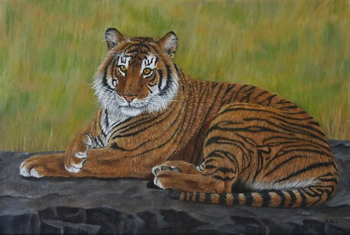 Tiger Laying Down by Sid's art