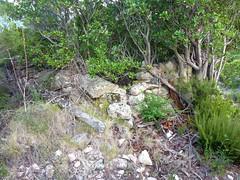 Chemin de la Montagne aux Plages : vestiges de la bergerie de Strascinella