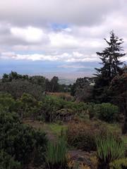 Makai views