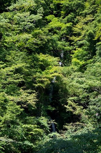 大樽(大樽沢の滝) 2012.9.29-2
