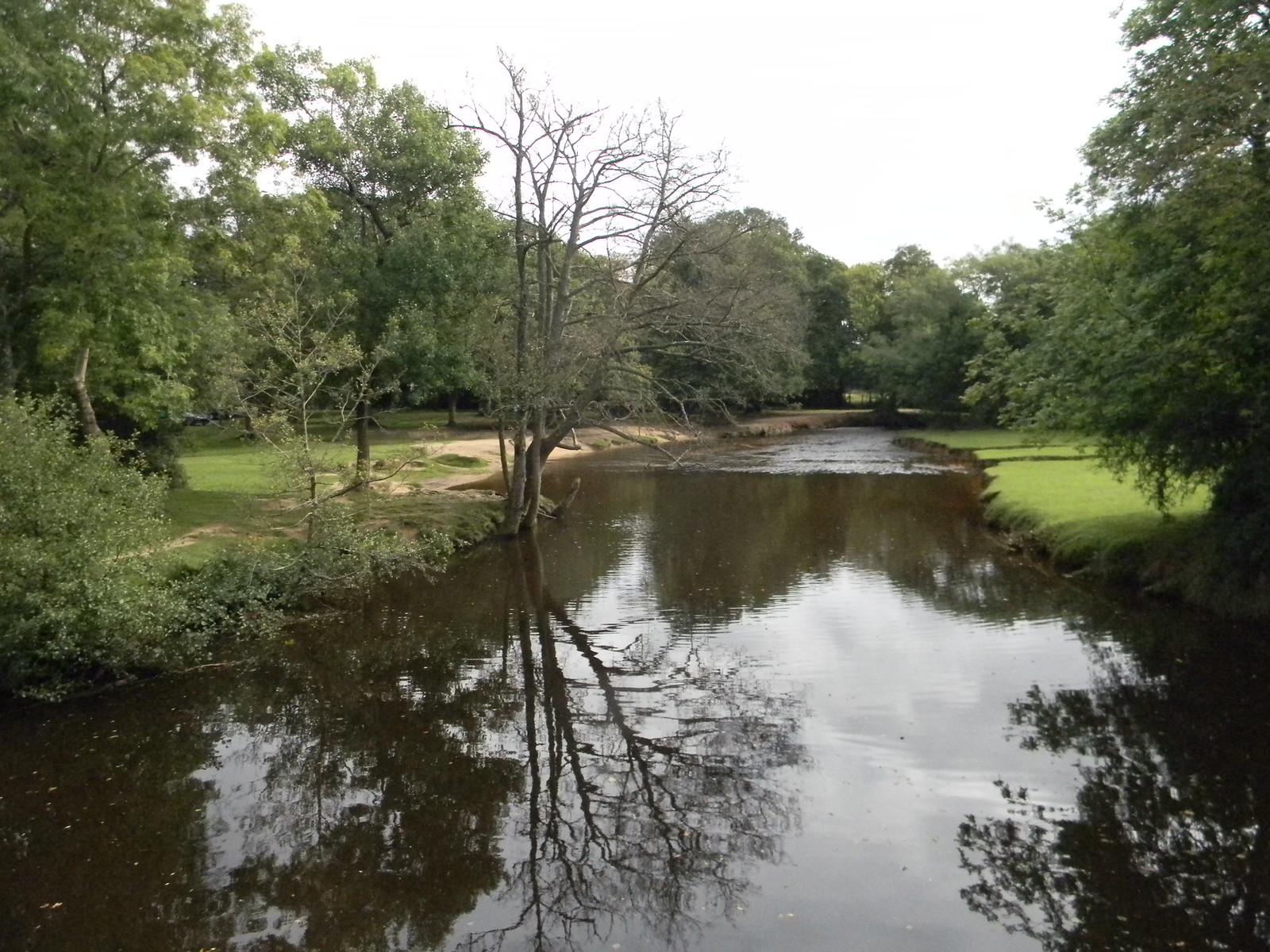 Watercourse Brockenhurst Circular