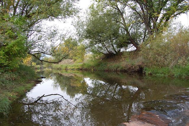 Looking up Boulder Creek - Walking at Sawhill Ponds - Boulder, CO