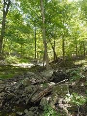 日, 2012-09-16 12:16 - Lenape Trail