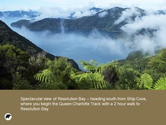 Tigers Den Luxury Accommodation and Guest Lodge 28 Vacation in New Zealand