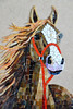 horse portrait WIP