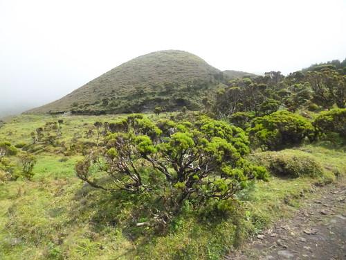 pico norte 6