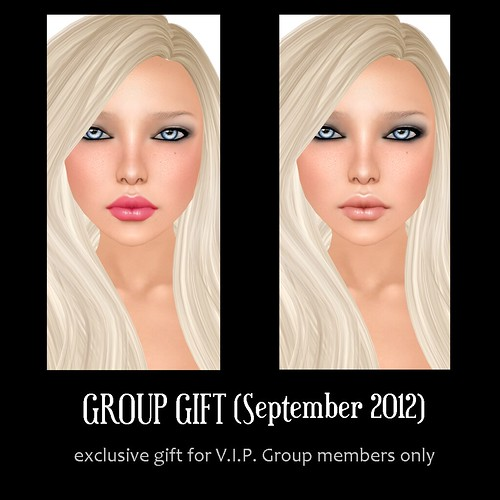 V.I.P. Group Gift September 2012
