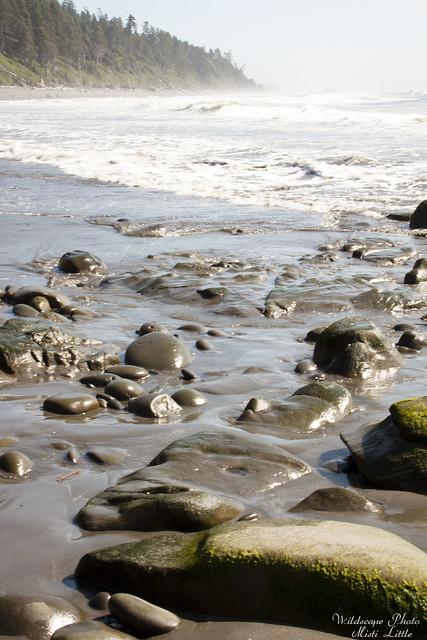 onp_beach19