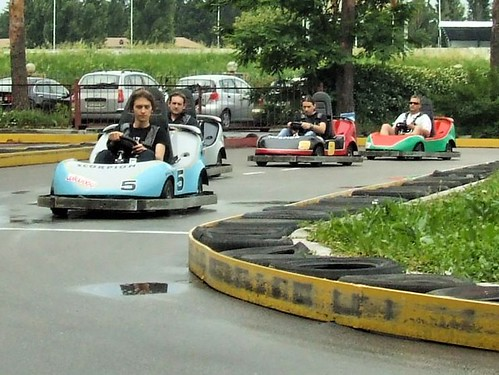 Zfort Group Karting (2009)