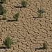 israel2012-desert-18