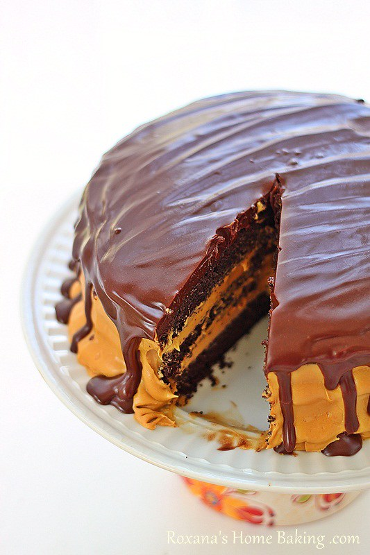 ... layers of rich chocolate cake sandwiched with dulce de leche frosting