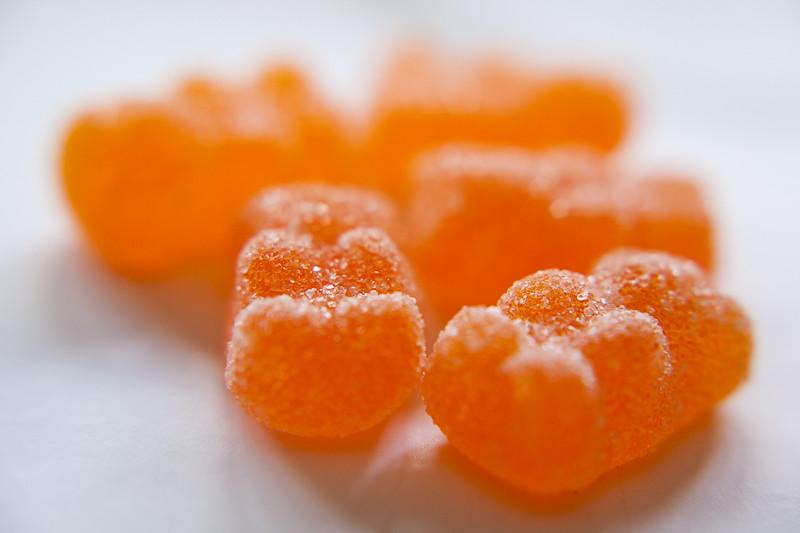 Orange Bear