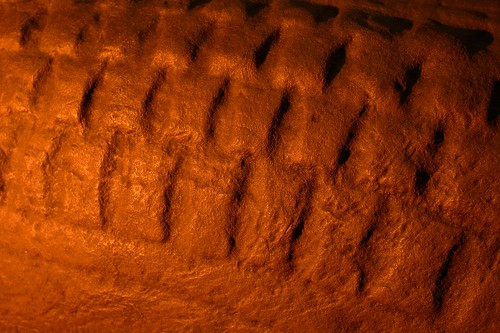 Viking Hogback Stone