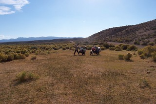 Tent Camping in a cow pasture in Nevada