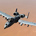 A-10 Thunderbolt II (U.S. Air Force photo/Master Sgt. William Greer)