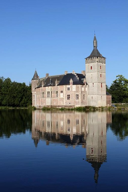 view of castle and mirror image in water