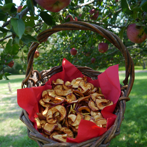 2012-09-17 - Dried Apple Chips - 0010