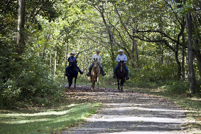 Trail Rides at New River State Park