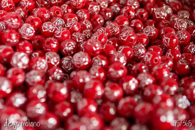 95/365 - Rosas - 30.08.12