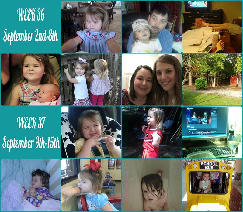 Collage365wks3637