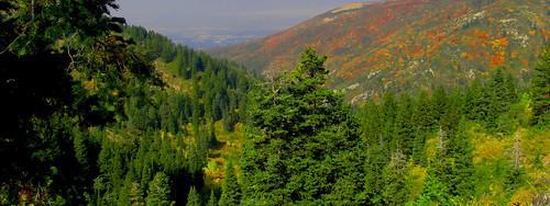 autumn utah fallcolors canyon mining mines bountiful daviscounty aubreyguynn westernhistory burromine pierrepeugeot burromineroad