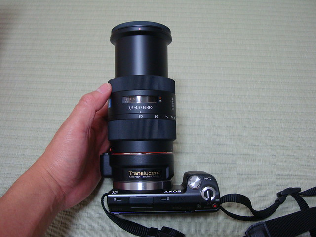 DSC08537