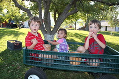 Three kids in a wagon 7